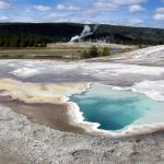 Image Courtesy Diane Renkin_Yellowstone NPS