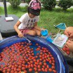 名古屋市円頓寺トマトマ(トマト祭り)トマトにまつわるお店がずらり。子供もトマト好きに。