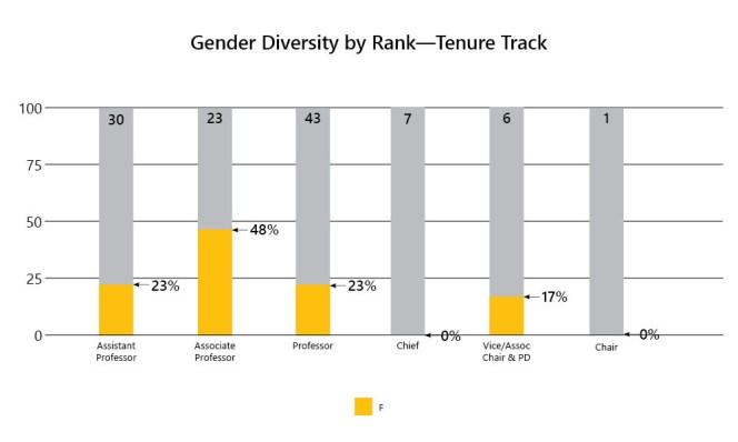 3-Gender Diversity by Rank-Tenure Track