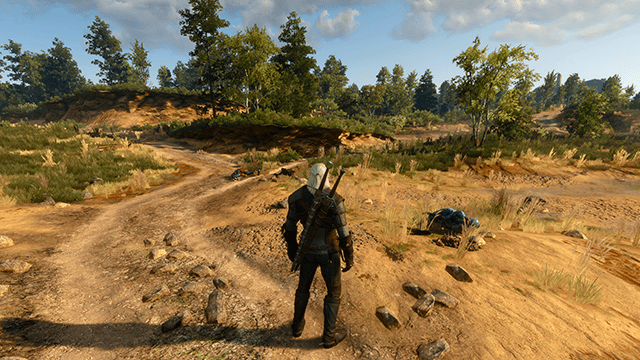 the witcher 3 wild hunt detail level 001 640px - Factors that affects gaming Performance,Details setting,features explanation.
