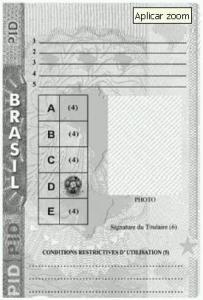 brazil international driving permit