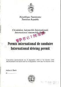 tunisia-idp-2