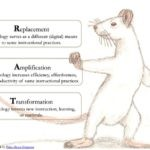 Replacement, Amplification, and Transformation (RAT) Model
