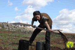 Make Rojava Green Again - March 2018