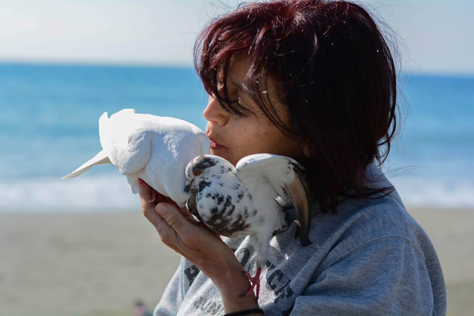 Maria Frantzi visits Limassol Beach every morning to feed pigeons.