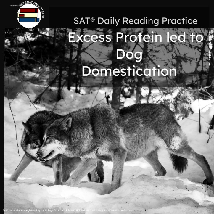 Excess Protein led to dog domestication  reading help for SAT