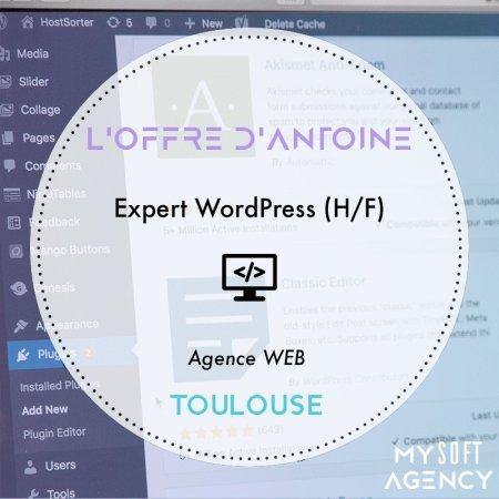 [OFFRE DE LA SEMAINE]  Pour une agence Web, Antoine recherche un Expert WordPr...