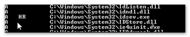 Вирусы в папке Windows | Интернет-профи