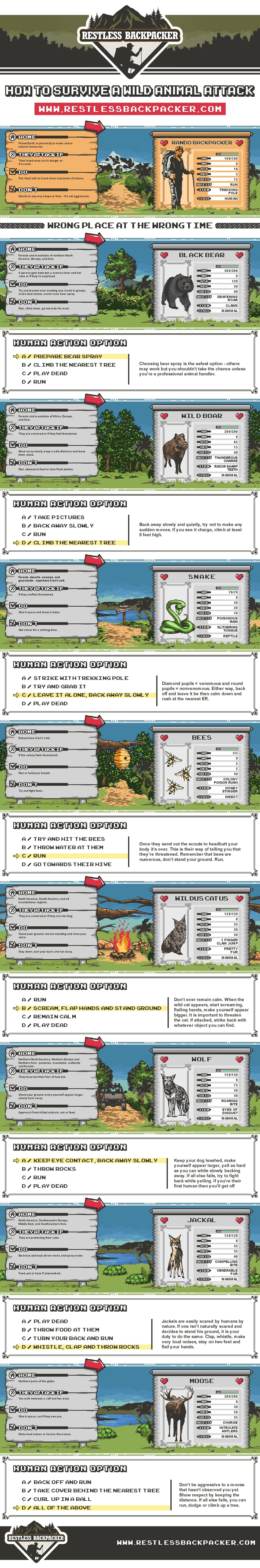 Restless Backpacker infographic