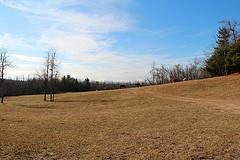 Pinnacle Mountain Horse Farm