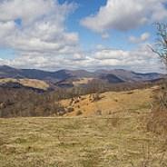 Newfound Mountains