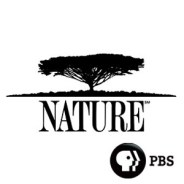 Nature on PBS logo