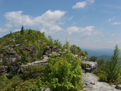 The Chimneys Trail