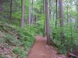 Rebuilt trail