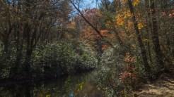 Little River upstream