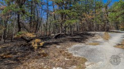 Signs of prescribed burning