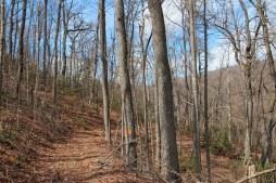 Hospital Rock Trail
