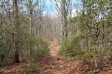 Hospital Rock Trail summit
