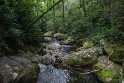 Creek below the falls