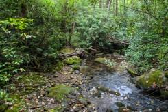 Lower creek