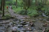 Creek crossing on Cat Gap Trail