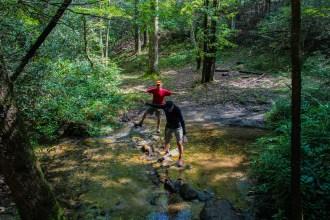 Meanderthals cross the creek