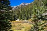 Meadow below Notch Mountain