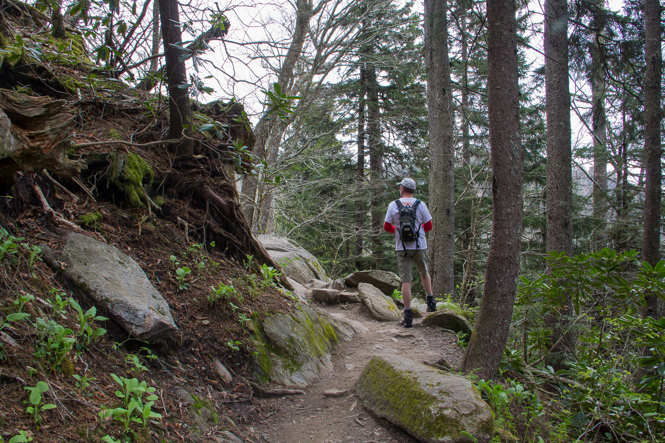 Hiking the AT in Great Smoky Mountains National Park - Photo by Jeff Clark