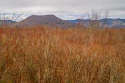 The twin peaks of Sam Knob