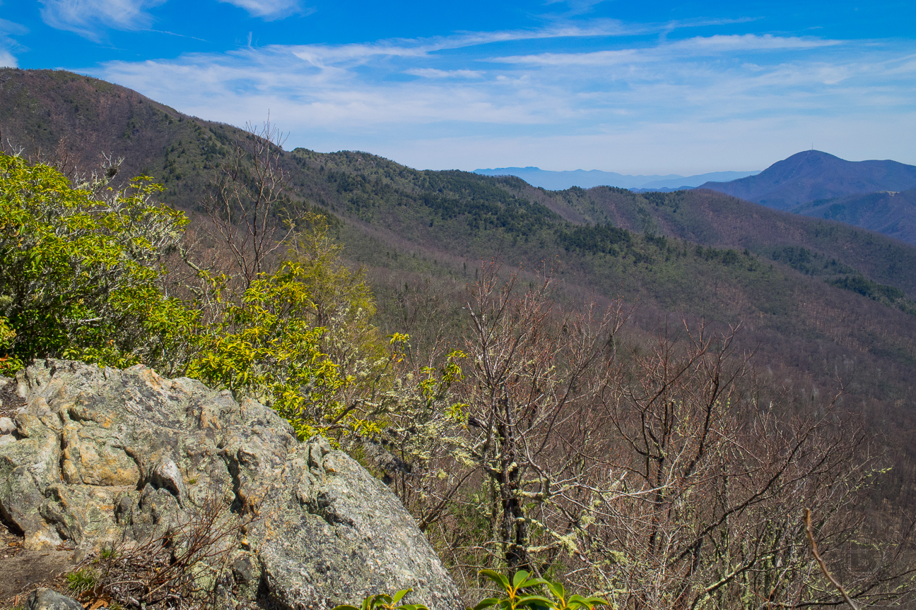 Meanderthals Scout Camp Loop On Art Loeb Trail And