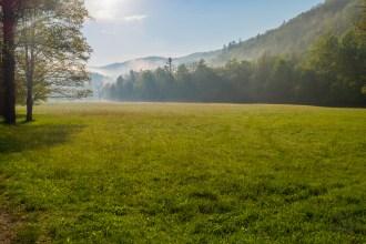 Cataloochee meadow