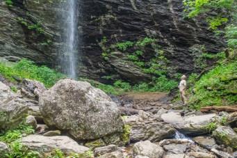 Peering up at Douglas Falls