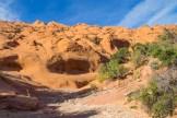 Wingate Sandstone