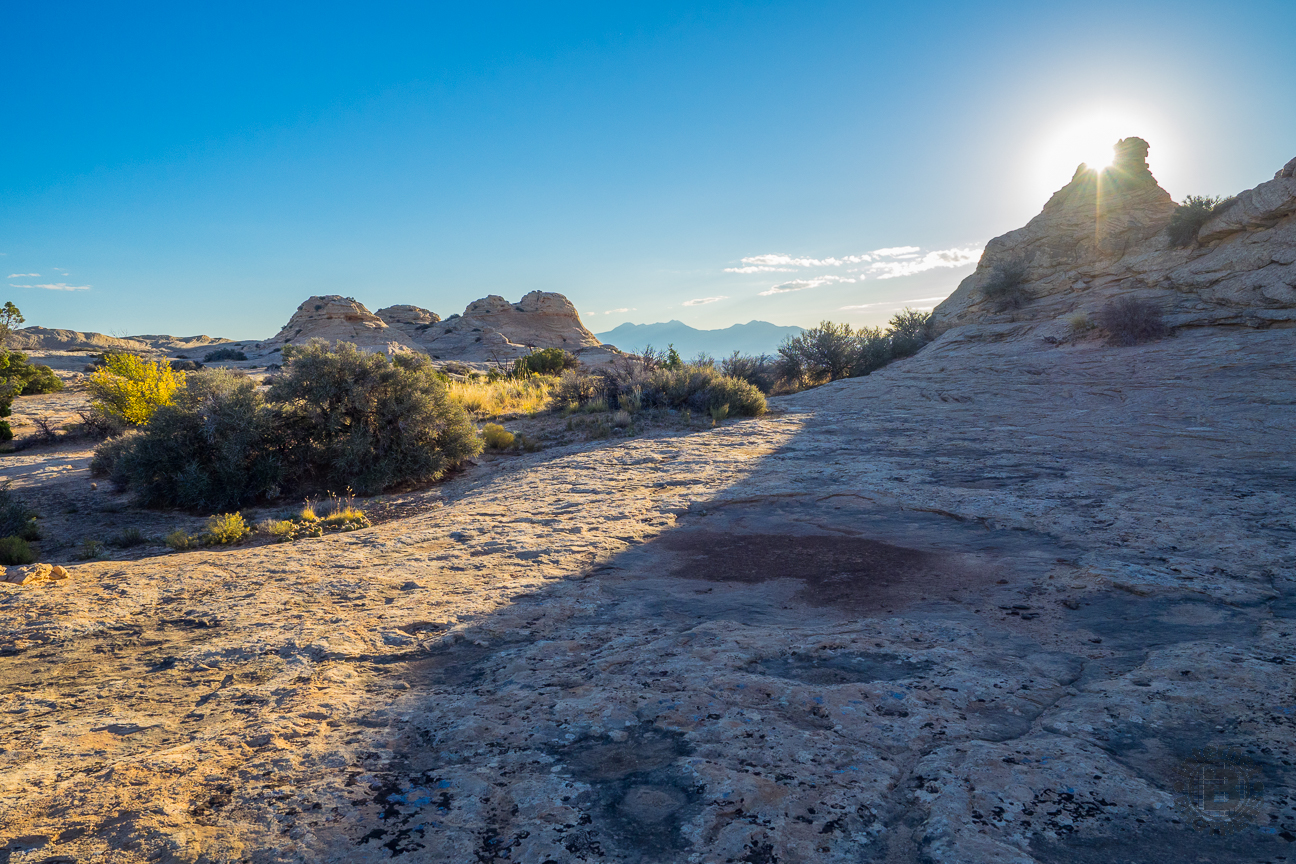 Two miles in, the Lathrop Trail changes from sand to sandstone, and from sandy dunes to sandy domes. The firm slickrock was a relief for our feet, tired of trudging through miles of deep sand. Imagine walking on a dry beach with hiking boots.