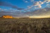 Prairie along the trail