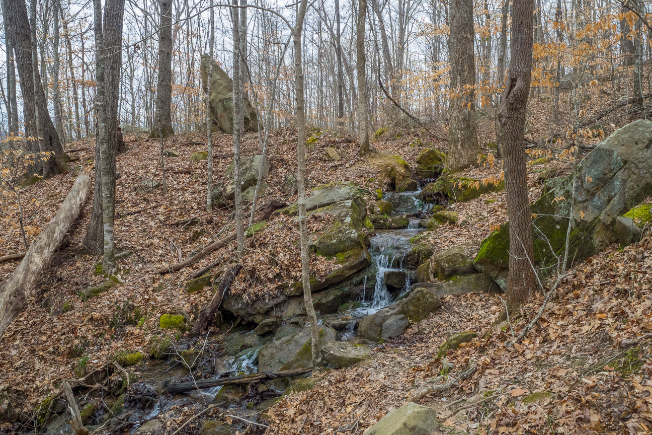 About an hour into the hike, perhaps two miles down the trail, you will begin to hear the sound of water. At first just a trickle, then becoming more pronounced, this is the flow from Polly Anne Spring. There is a bench at this particular spot enabling you to rest and enjoy the sight and sound.