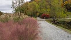 Morse Park walkway