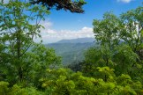 Mt. LeConte from the A.T.