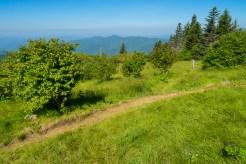 Suli Ridge
