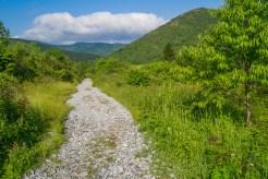 Gravel covered trail