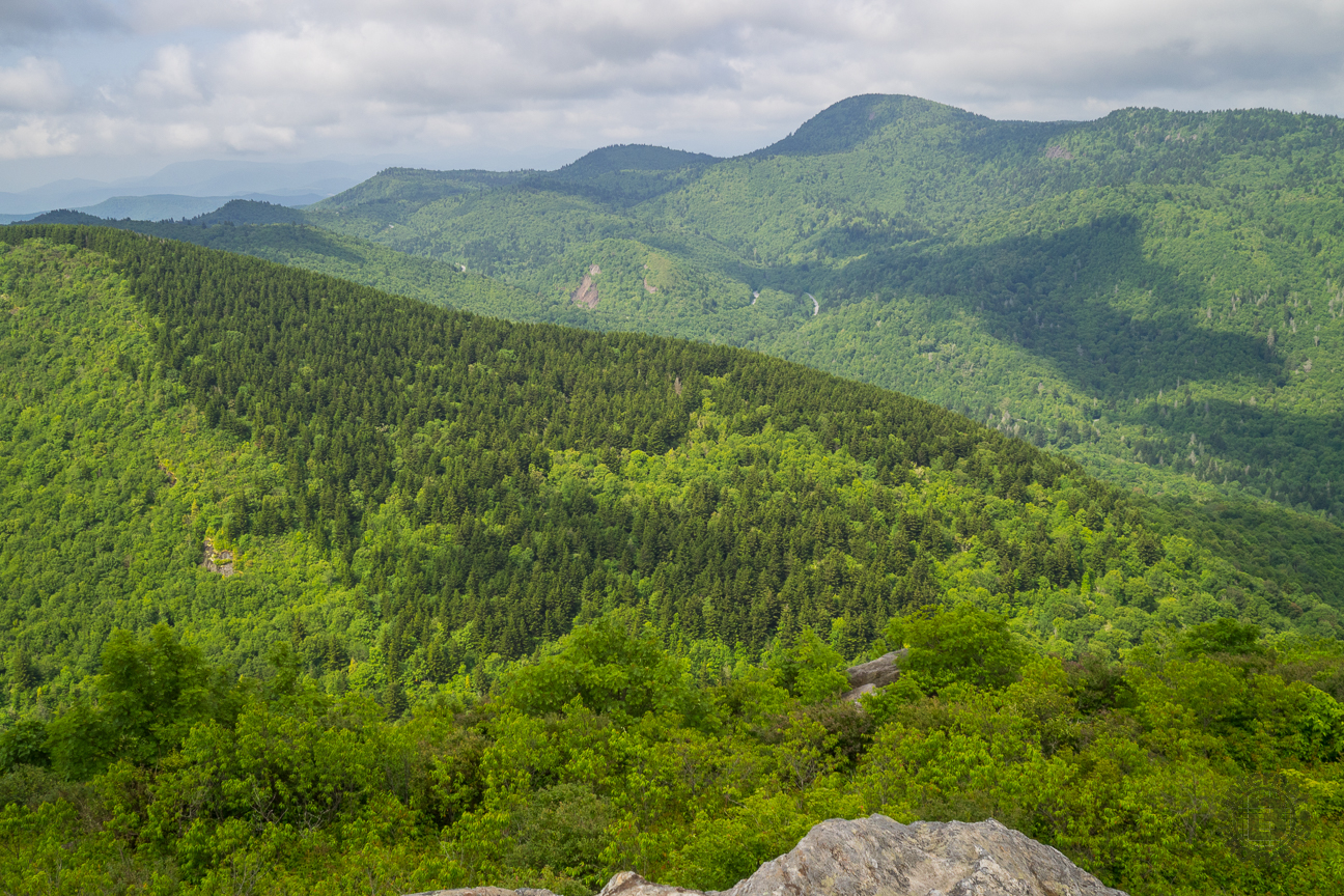 If you look at the ridge on the far upper right of this picture, you can make out the rock outcrops on the ridge. You have a great view of Sam Knob from over there.