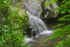 One of many cascades