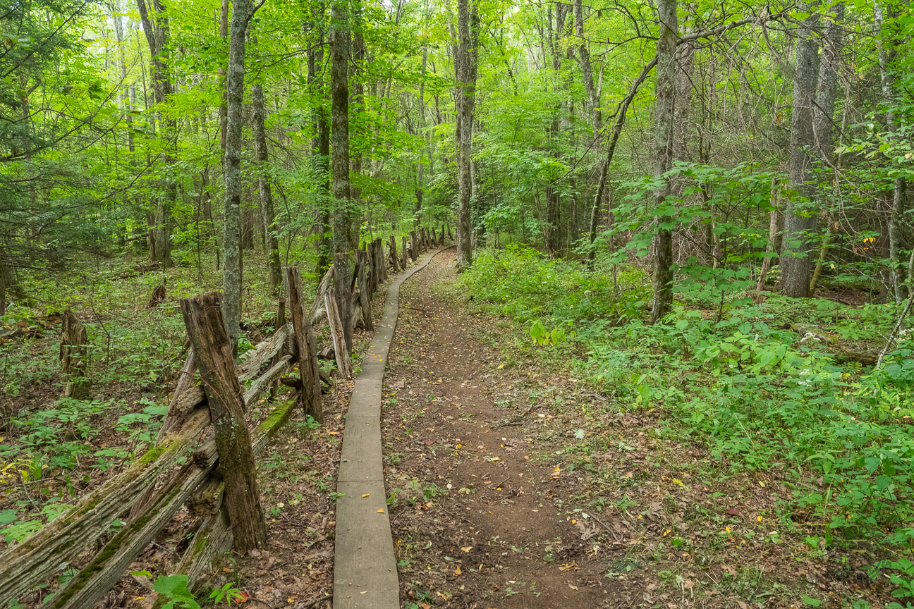 The Cataloochee Divide Trail follows an original locust split rail fence that denotes the eastern national park boundary. It passes through a mostly deciduous forest that is beautiful to look at no matter the season.