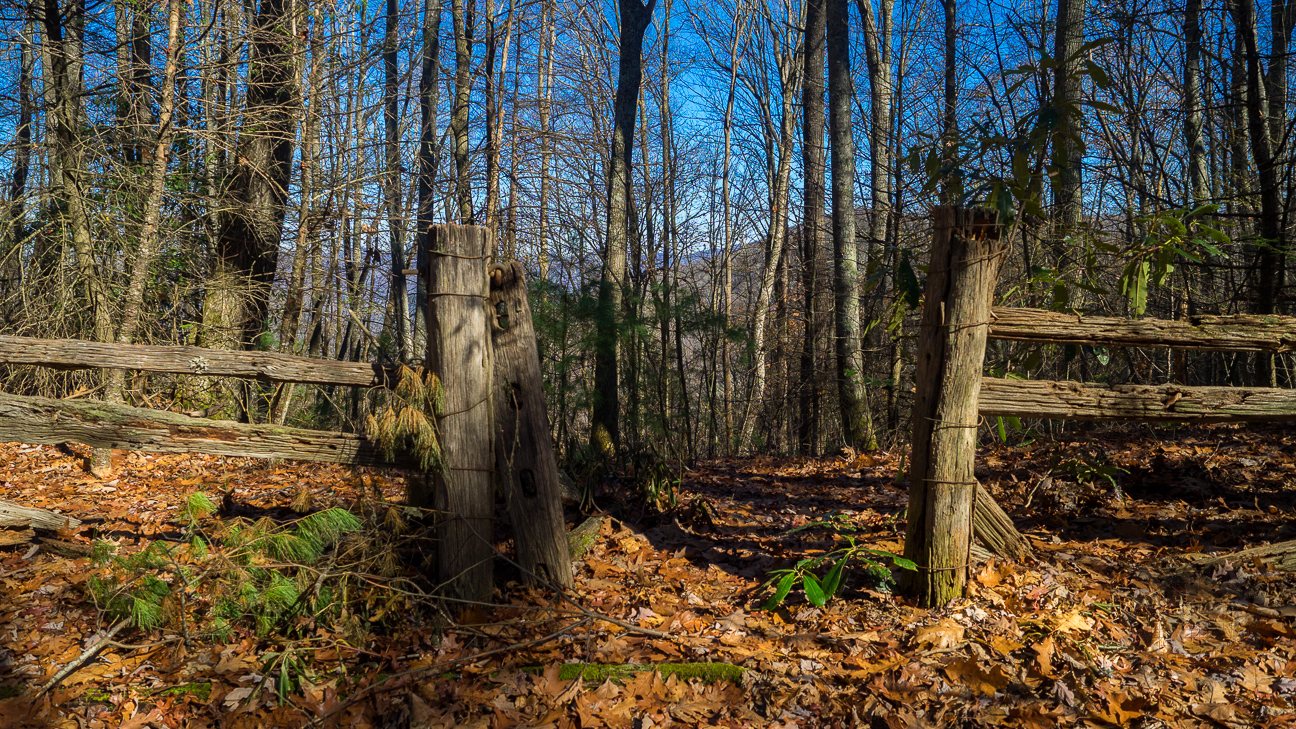 Boundary gate at Hoglen Gap. This old park boundary fence was put up by the Civilian Conservation Corps in the 1930s. This gate denotes a connector to a no-longer-used logging road.