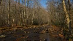 Not much water in Bradley Fork