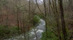 Wide turn in Bradley Fork