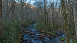 Porters Creek 2