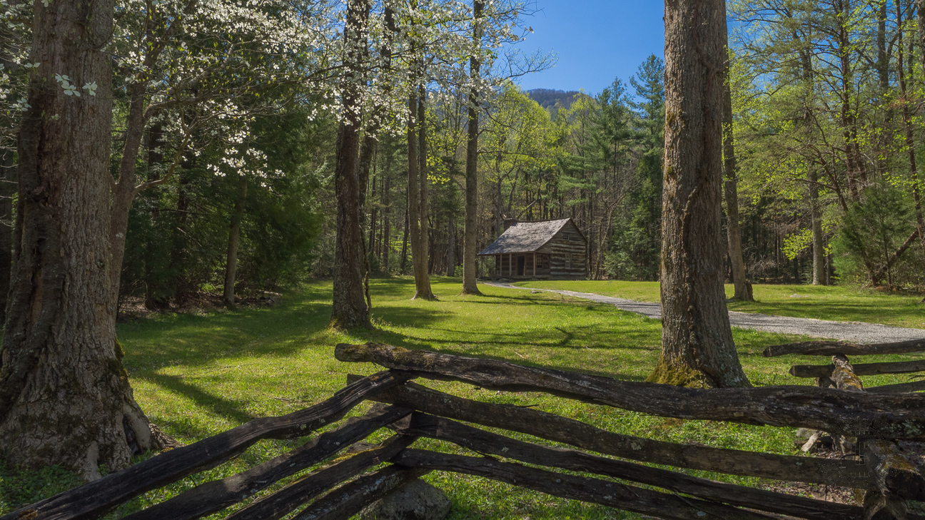 Built in 1910 by a veteran of the Battle of Shiloh, the Carter Shields cabin sits in a lovely nook in the forest surrounded by flowering dogwood and the Smoky Mountains.