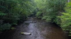Cataloochee Creek at guaging station