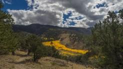 Aspen line Buck Creek